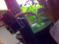 Arduino with WiFi shield on an AeroGarden